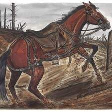 War Horse  Aw  7  Chapter 7  The Loss Of A Friend  Final Artwork