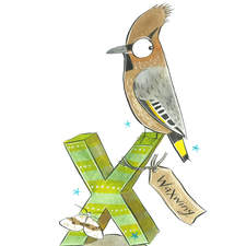 Waxwing & Xanthorhoe from a British wildlife alphabet