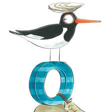 Oystercatcher & Oyster from a British wildlife alphabet