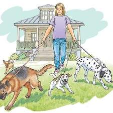 A young girl takes four dogs for a walk, a three legged Alsatian, a Terrier, a Dalmatian and a Chihuawawa, old American bungalow in the background