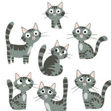 Iwb Final Cat V2 Rgb