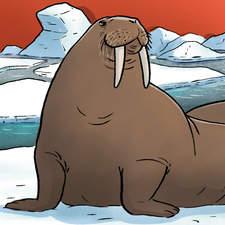 Bb Wildlife Arctic