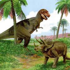 T. Rex   Triceratops Jpg