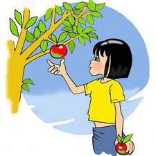 Girl plucks apple