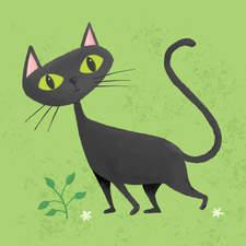 Black Cat Retro