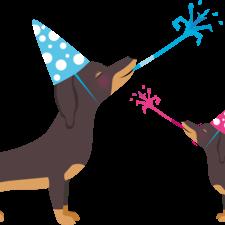 Celebrating Sausage Dogs