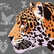 Animals Cover Grey 2000 72