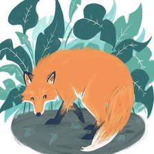 Fox in the foliage - an illustration from a personal project
