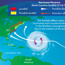 Formation of a Hurricane