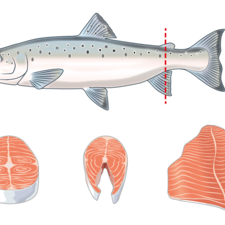 Different cuts of fish