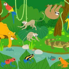 Rainforest sticker scene - CBeebies Animals Magazine