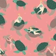 A Turtle Adventure