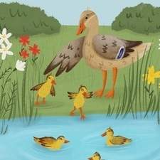 Personal Work - Illustration for a children's book based on Dilly, a scared duckling afraid of swimming.