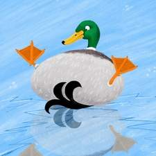 Duck on ice
