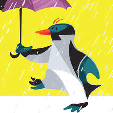 Character design of a penguin on a rainy day - Personal work