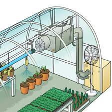 The greenhouse - Educational illustration