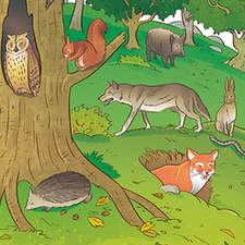 Natural environments - Educational illustrations