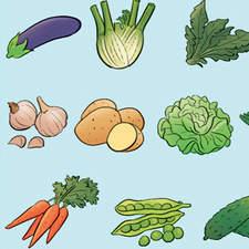 Food pyramid - Educational illustration