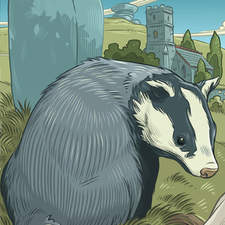 Badger near standing stone and Cornish moorland church