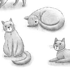Black and white character illustrations of Dinah the cat for a personal project on my own modern re-telling of Alice in Wonderland.