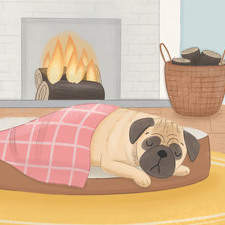 """Illustration for """"The Fair-Weather Pug"""" book."""