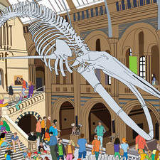 Where is the dog in Natural History Museum?