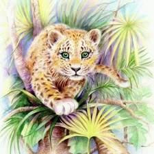Crayon leopard