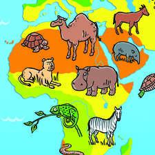 How Habitats Work - Bramble Kids