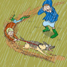 Collins, peapod readers, I'm Bored, Dog drag in the rain