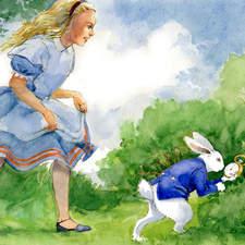 Alice in Wonderland chases white rabbit