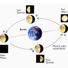 Diagramatic illustration of phases of the moon as it orbits Earth