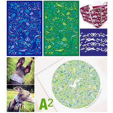 A2 is a collaboration with a sibling.  Design for Silver Peacock - collar designer for the discerning hound.