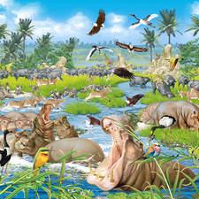 animals of the Okavango Delta in Africa