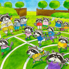 Racoons racing on sports day at their school.