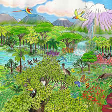 The jungle is a colourful place with many creatures living there.