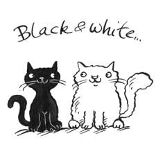 Cats black and white