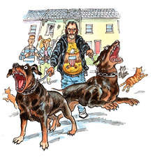 Hard looking bloke with rotweilers in front of run-down terrace house, startled teenagers in background. Frightened cats.