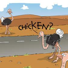 Chicken Ostrich