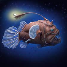 Deep Sea Fish(Melanocetus jonsonii)