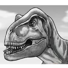 Dinosaurs - Quick Minds