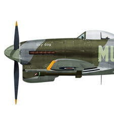 Typhoon Tankbuster 1944