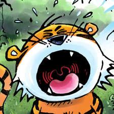 Tiger Roar