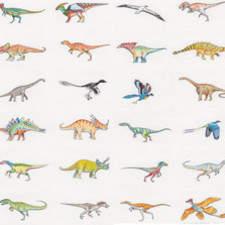 Dinosaur - illustration for publication