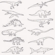 Illustration for Dinosaur and  Reptiles Publication